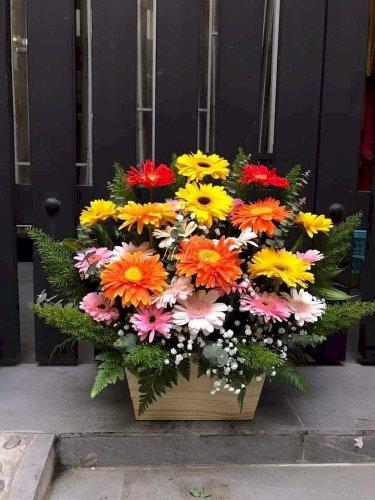 Hộp hoa chúc mừng khai trương shop phát tài phát lộc - LDNK67