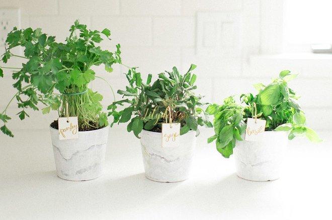 8 cách tiết kiệm khi mua hoa trang trí nhà(3)