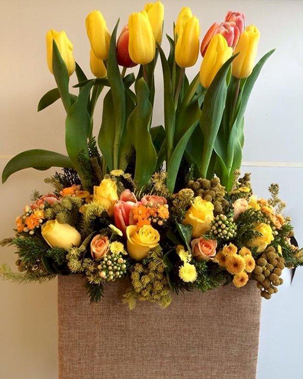 Hộp hoa tulip tươi mùa xuân vàng rực rỡ - LDNK155